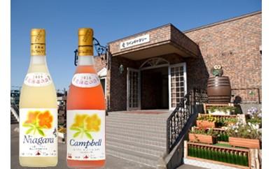 【A3101】小樽市の花 ツツジ 甘口ワイン2本セット