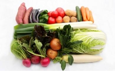 R29005 JA直売所から新鮮発送!大分県産野菜の1年間定期便〃計12回