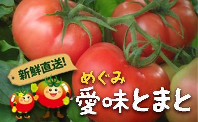 8A4-JK 「新鮮直送」佐賀県産 愛味(めぐみ)とまと 1箱(約4kg)