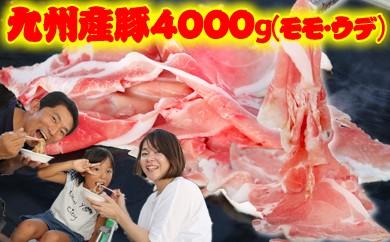 B4000 ★厳選★豪快特大盛り!九州産豚4000g(モモ・ウデ)切落し【期間限定】