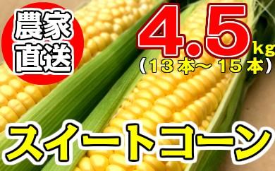 35-05先行予約!生産農家から朝どれ直送!スイートコーン30年5月下旬~発送