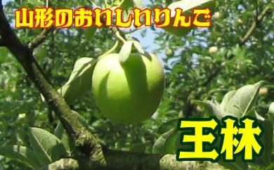 Z1301 王林(山形県産) 約5kg