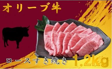 679 【A5・4等級】オリーブ牛ロースすき焼き用1.2kg