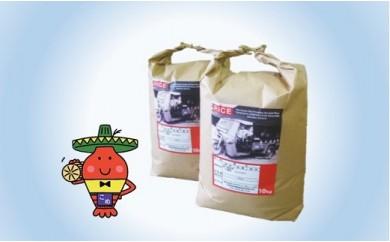 C203 コメアミーゴこだわりのいすみ米コシヒカリ20kg(白米)