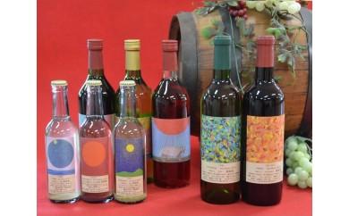 D-10 安心院*小さなワイン工房ワイン8本セット