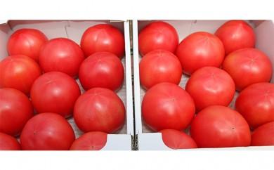 [№5672-0167]甘熟トマト『白岡の太陽』2キロ×2箱