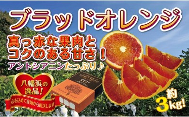 C39-9.アントシアニンたっぷり「ブラッドオレンジ」約3キロ