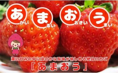 B910 あまおう【秀品DX】6~12玉×2パック【限定100名】