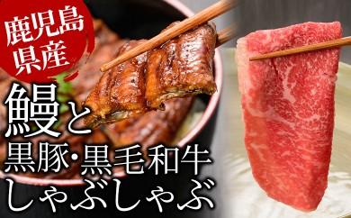 E-035 【贅沢3種盛】うなぎ蒲焼と黒毛和牛・黒豚しゃぶしゃぶ肉