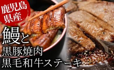 E-034 【豪華3種】うなぎ・黒毛和牛・黒豚贅沢三昧