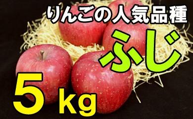 りんごふじ(ご自宅用)5kg