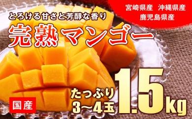 B578 国産マンゴー 約1.5kg(3~4玉)