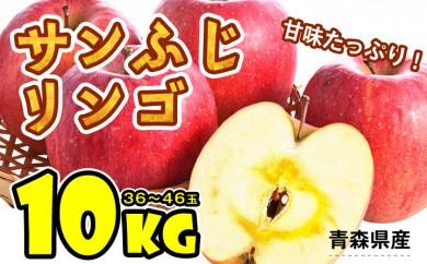 B573 サンふじりんご 約10kg