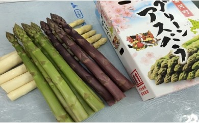 [03-133]北海道浦河産 アスパラガス3色食べ比べセット(1kg)