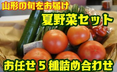 D1405 夏野菜セット(5種詰め合わせ)