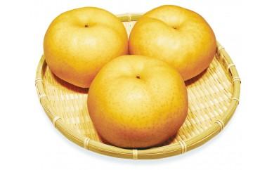 A-70 ふるさと旬の果物シリーズA 12月 あたご梨