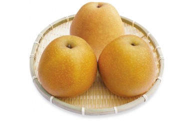 A-70 ふるさと旬の果物シリーズA 1月 王秋梨