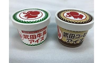 B2703武田牛乳アイス&武田コーヒーアイス9個入り