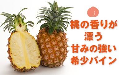A1-2259/甘みが強く桃のような甘い香り! ピーチパイン