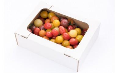 13-(7).ミニトマトいろどり小箱
