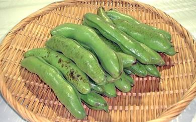 A)千葉県産 そら豆(M・Lサイズ) 4kg