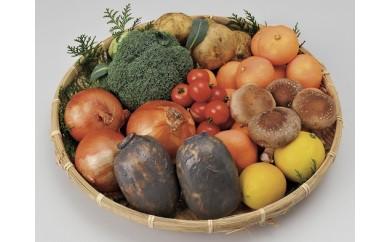 A-4 肥前の国のお野菜詰め合わせセット