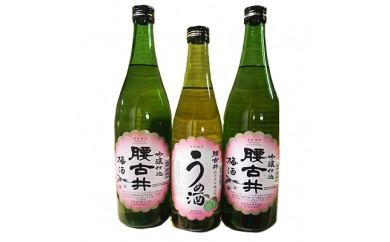 地酒梅酒セット(純米大吟醸仕込500ml×1本、吟醸仕込720ml×2本)計3本【1015234】
