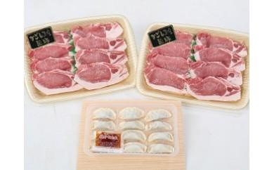 【A02020】鹿児島県産黒豚テキカツ大盛りセット