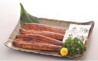 7A-22うなぎ蒲焼(鹿児島県産)