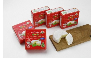 カマンベールチーズ(30-Ⅰ4)