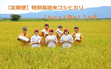 D20【新米!定期便】特別栽培米コシヒカリ(2㎏×12ヵ月)