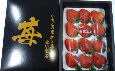 A60 赤い宝石あまおう【秀品】9玉~12玉(3L~4Lサイズ)化粧箱【限定50名】