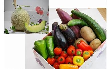 【9月発送】神栖市産 野菜詰合せ(5品)+メロン