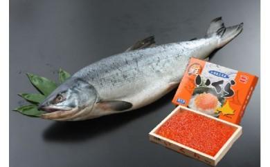 海産問屋カネニの新巻鮭1.6といくらの親子セット<醤油>(30D-Ⅲ1)