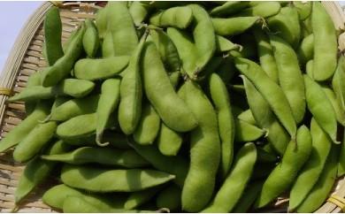 007-102 枝豆