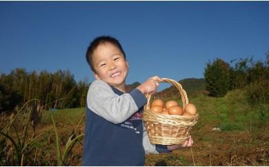 [№5862-0600]【3月申込】限定 大山の麓で育ったさかもとのたまご120個