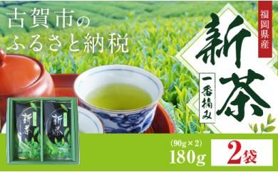 I1707 新茶 一番摘み 2本セット(90g×2袋)