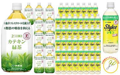 【49025】伊藤園カテキン緑茶&スタイリースパークリング大量セット
