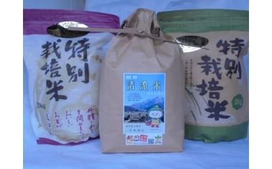 [№5884-0170]大野のお米食べ比べセット
