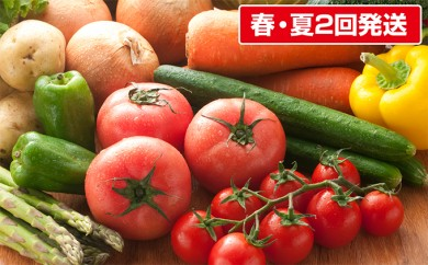 [№5833-0099]〔しんしのつ産直市場〕人気の採れたて旬の春・夏野菜詰合せ(2回発送)