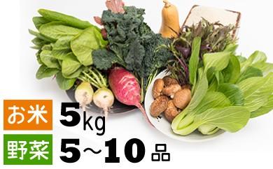 C0-35【おかわりせれくと】米5kg・旬の野菜セット②
