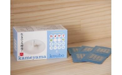 カメヤマ酵母(爽やかヨーグルト味)