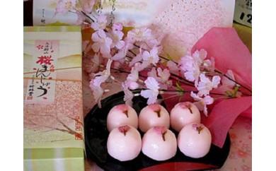 A111桜まんじゅう12個入