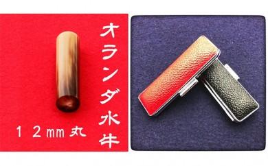 [№5786-1851]オランダ水牛12mm(5書体)牛革ケース(赤)