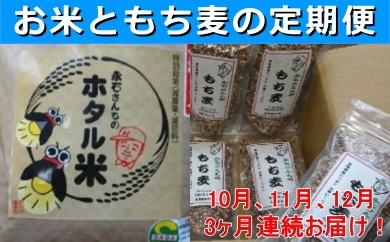 d-7 永石さんちのホタル米、もち麦3ヶ月新米お届けコース(10~12月)