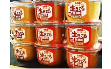 T026【大平樂特選】九州産無添加あわせ味噌 10個セット(7.5kg)