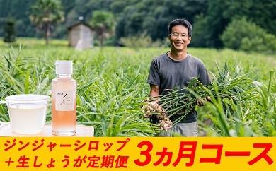 Sqc-01 日本一のしょうがをお届け!四万十生姜とジンジャーシロップ定期便