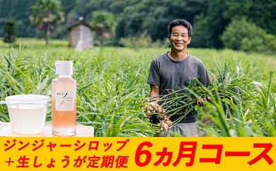 Sqc-02 日本一のしょうがをお届け!四万十生姜とジンジャーシロップ定期便