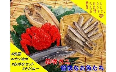 CA-03017 【北海道根室産】花咲ガニと愉快なお魚たち[460078]