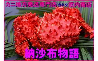 CB-47001 【北海道根室産】花咲ガニ1.2kg前後×1尾[460098]
